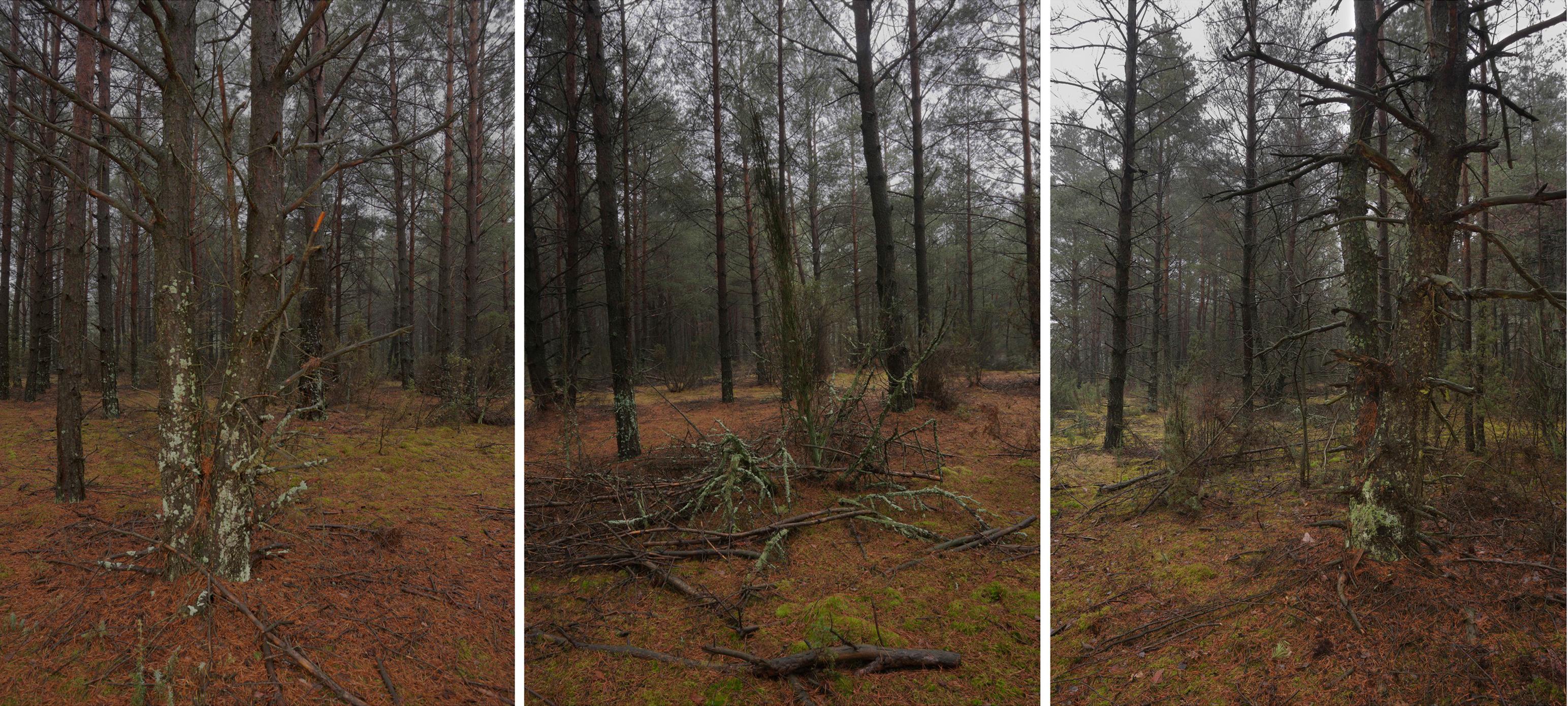 Treblinka Triptych